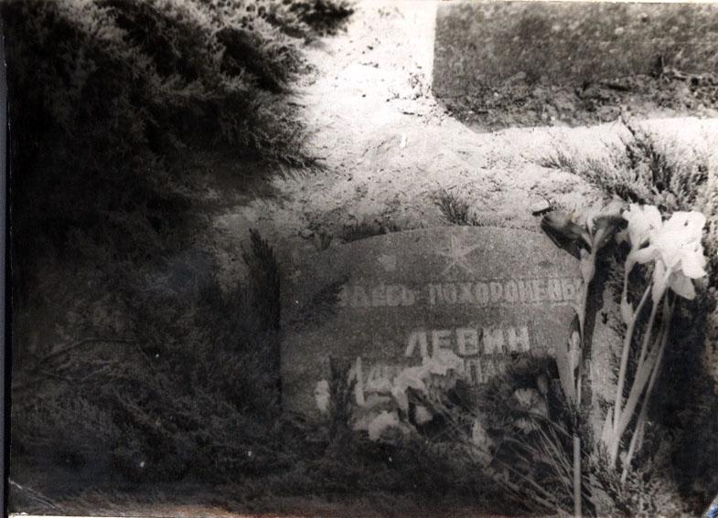 Левин А.П. Место захоронения. Из архива Родиной А.